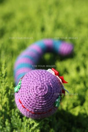 あみぐるみ ヘビの女の子の写真素材 [FYI00279938]