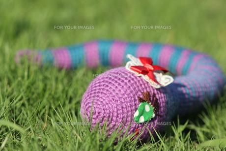 あみぐるみ ヘビの女の子の写真素材 [FYI00279949]
