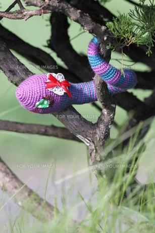 あみぐるみ ヘビの女の子の写真素材 [FYI00279968]