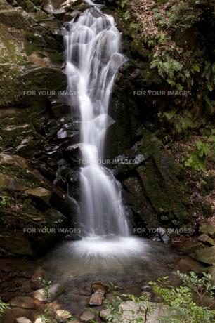 鶯と名のつく滝の写真素材 [FYI00279986]