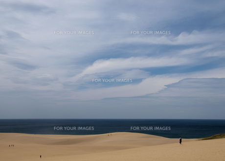 鳥取砂丘の写真素材 [FYI00280016]