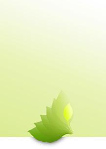 Greenの写真素材 [FYI00280158]