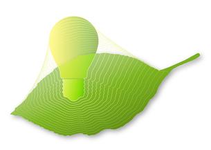 葉の中の電球の写真素材 [FYI00280175]