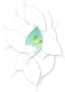 葉の中の青空と小鳥の家族_タテの写真素材 [FYI00280176]