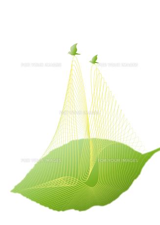 葉を運ぶ小鳥のつがいの素材 [FYI00280178]