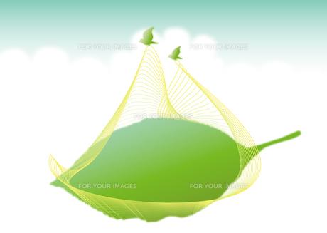 葉を運ぶ小鳥のつがい_skyヨコの写真素材 [FYI00280179]