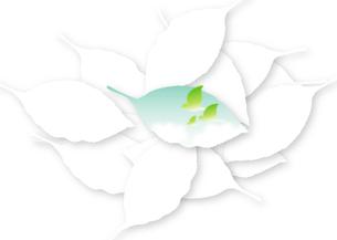 葉の中の青空と小鳥の家族の写真素材 [FYI00280187]