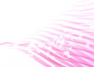 波動_Pinkの写真素材 [FYI00280215]