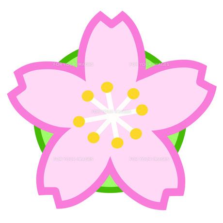 桜のアイコンの素材 [FYI00280423]