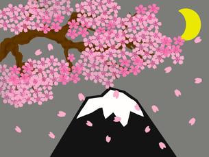 桜の月夜の富士山の写真素材 [FYI00280438]
