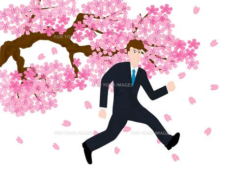 旅立ちの春の素材 [FYI00280442]