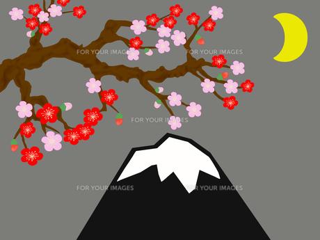 梅と月夜の富士山の写真素材 [FYI00280453]