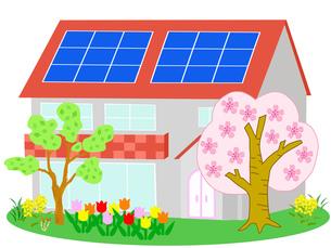 春のエコ住宅の写真素材 [FYI00280565]