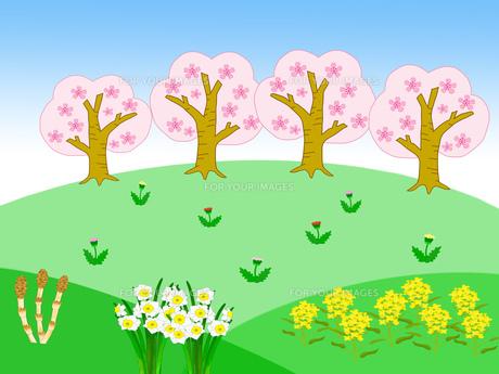 春の風景の素材 [FYI00280571]