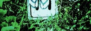 夏のあし音の写真素材 [FYI00280712]