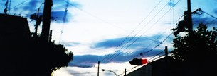 赤信号と青い空の写真素材 [FYI00280726]