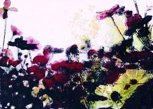 見上げる秋桜の写真素材 [FYI00280728]