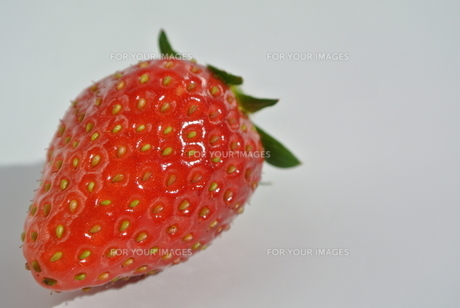 いちごアップの写真素材 [FYI00280862]