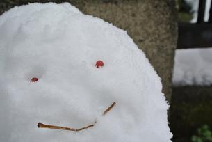 雪だるまの写真素材 [FYI00280869]