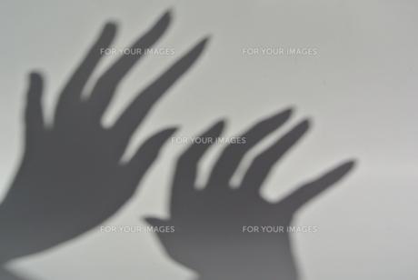 影の恐怖の写真素材 [FYI00280875]