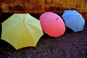 雨上がりの傘の写真素材 [FYI00280945]