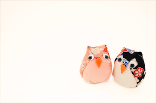 フクロウのお手玉の写真素材 [FYI00281153]
