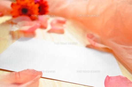 花メッセージの素材 [FYI00281185]