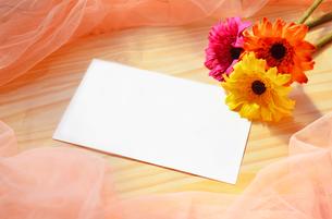 花メッセージの写真素材 [FYI00281192]