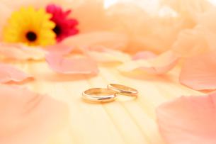 結婚指輪の写真素材 [FYI00281193]