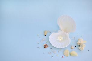 貝殻と宝石の素材 [FYI00281198]