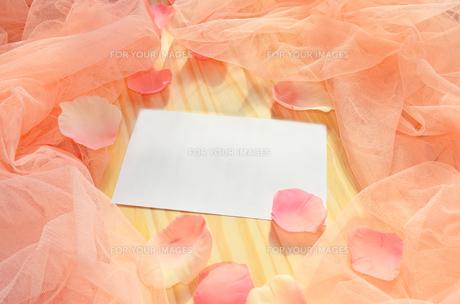 花びらメッセージの素材 [FYI00281211]