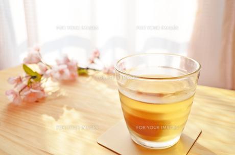梅酒の素材 [FYI00281227]