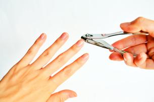 爪切りの写真素材 [FYI00281236]