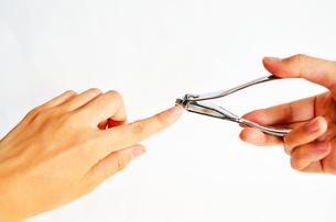 爪切りの写真素材 [FYI00281243]