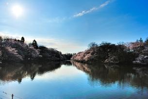 水辺の春の写真素材 [FYI00281256]
