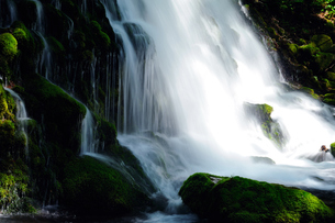 滝の流れの写真素材 [FYI00281269]