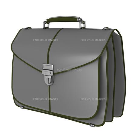 鞄の素材 [FYI00281419]