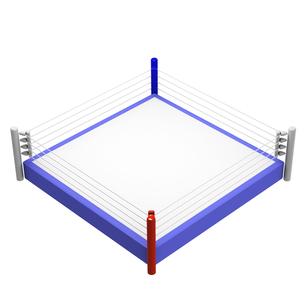 ボクシングリングの写真素材 [FYI00281499]