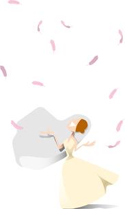 羽と花嫁の写真素材 [FYI00281740]
