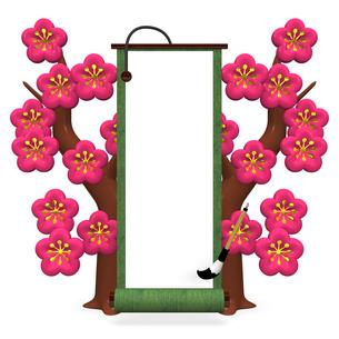 緑の巻物と梅の花の写真素材 [FYI00281852]