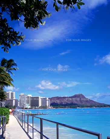 ハワイのワイキキビーチの遊歩道とダイヤモンドヘッドの写真素材 [FYI00282110]