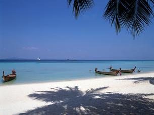 タイ ピピ島のビーチの写真素材 [FYI00282124]