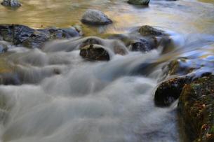 小川の写真素材 [FYI00282202]