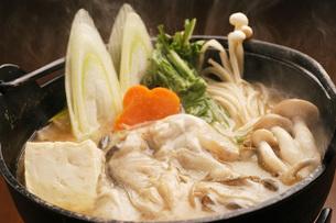 北海道産・カキ鍋の写真素材 [FYI00282443]