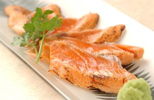 鮭の炙り刺身の写真素材 [FYI00282456]