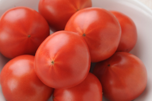トマトの写真素材 [FYI00282480]