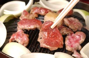ラム肉ジンギスカンの写真素材 [FYI00282500]
