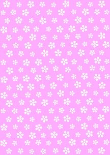 梅花模様の写真素材 [FYI00282636]