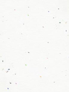 和紙のテクスチャの写真素材 [FYI00282648]