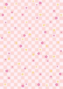 市松桜の写真素材 [FYI00282703]